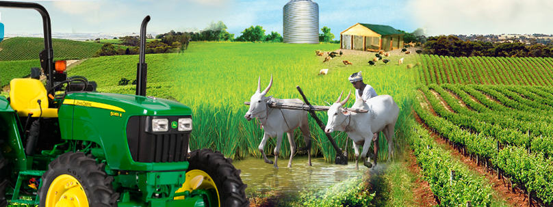 doubles traffic and revenue after seo for agriculture related site