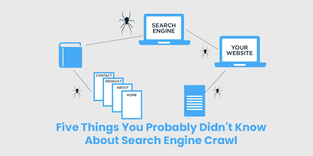 Five Things You Probably Didn't Know About Search Engine Crawl